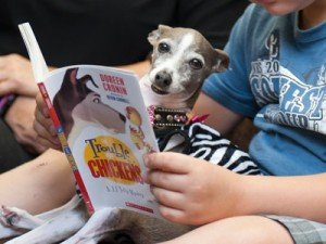 Quick Tips to Keep Your Kids into Reading